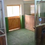 Paddockboxen und Offenstallplätze bei Itzehoe