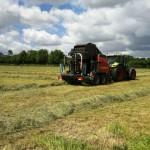 Die Weiden bieten genug Futter für eigene Heulage