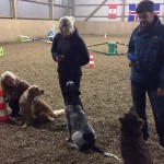 "Siegerehrung des ""dog & jump"""